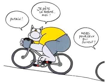 BD Le Chat