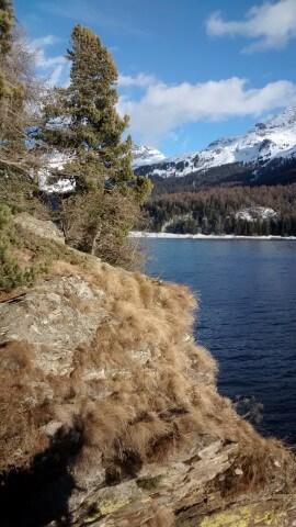 Engadin 2014. Lac de Sils
